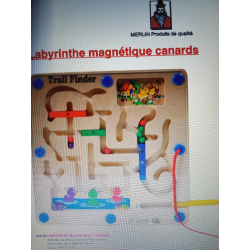 Labyrinthe canards magnétiques